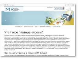 Mr-survey.ru - главная страница